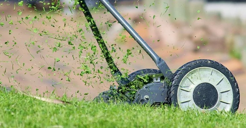 How to Easily Keep Your Compound Clean Thanks to Manual Mowers